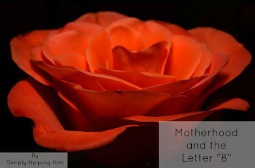 motherhoodb